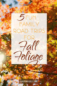 298 best fall ideas for families images on