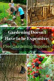 Garden Supplies 9 Gardening Supplies You Can Get For Free The Free Range Life