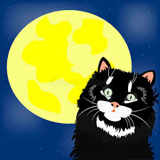 black cat and moon stock vector illustration of shines 18462883