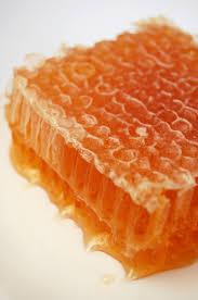 edible honeycomb honey the golden elixir ts fitness wellness guide
