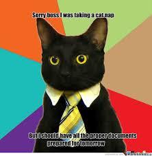 Slacker Meme - slacker cat by joey1 meme center