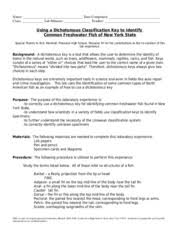 fish dichotomous key worksheet answers the best and most