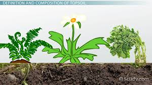 soil profile definition development u0026 types video u0026 lesson