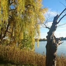 high park 717 photos 107 reviews parks 1873 bloor st w