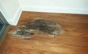repair hardwood floor damage magnificent on floor hardwood repair