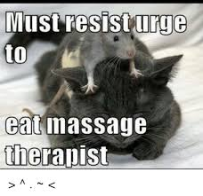 Massage Therapist Meme - 25 best memes about massage therapist massage therapist memes