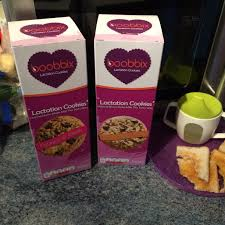 lactation cookies where to buy lactation cookies mousedogbaby