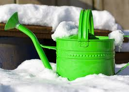 winter is coming u2013 here u0027s what to do when winterizing your garden