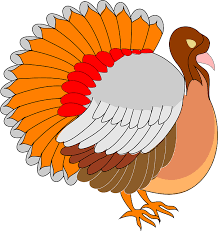 turkey bird png transparent png images pluspng