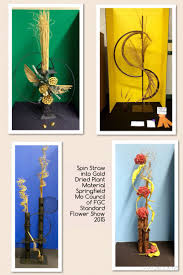 25 best springfield council of fgc standard flower show 2015 and