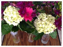 inexpensive flowers for a song discover inexpensive flower arrangements