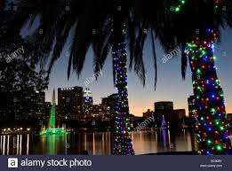 Decorate Palm Trees With Christmas Lights by Orlando Florida Usa 10th Dec 2014 Palm Trees Are Decorated