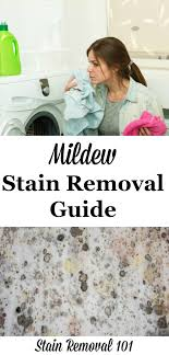mildew stain removal 2 large jpg
