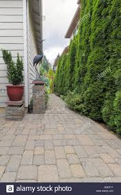 plants beautiful brick paver planters paver stone plants paver