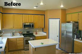 Professionally Painting Kitchen Cabinets Coffee Table Cost Refinish Kitchen Cabinets Refurbishing