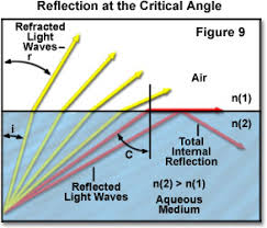 Light Is Not Refracted When It Is Molecular Expressions Microscopy Primer Light And Color