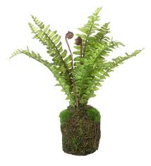 hanging terrarium complete with faux fern by london garden trading