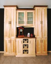 Kitchen Cabinet Plans Woodworking How To Build A Pantry Cabinet Inspirative Cabinet Decoration