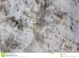 Concrete Loft Concrete Wall Texture And Background Loft Style Stock Photo
