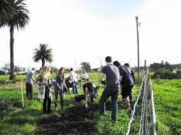 native plants for wildlife habitat and conservation landscaping cricket compost corral gets a habitat blanket