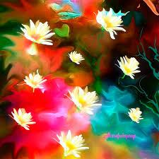 pretty daisys sherri of palm springs