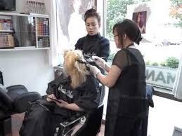 pro nails u0026 skin care beauty salon bellevue wa youtube