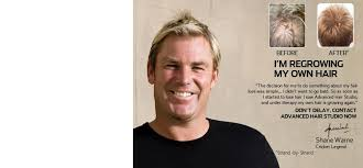 shane warne hair transplant the daily protein advanced hair studio a grand solution for the