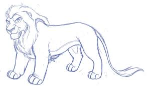 male lion sketch kohu scribbles deviantart
