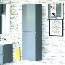 shallow wall cabinets with doors tall shallow cabinet exmedia me