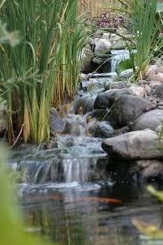 Best DIY Ponds Waterfalls  Fountains Images On Pinterest - Backyard waterfall design
