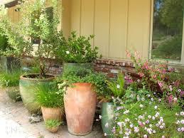 texas native plants nursery native plant garden design texas native plant garden designs