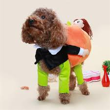 2018 Funny Teddy Vip Pet Dog Carrying Pumpkin Transfiguration Loaded