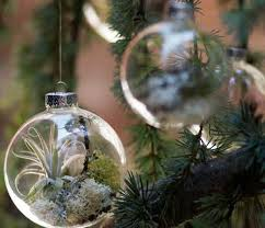 tree ornaments with living plants shelterness