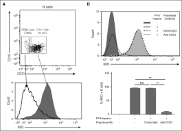 the antigenic complex in hit binds to b cells via complement and