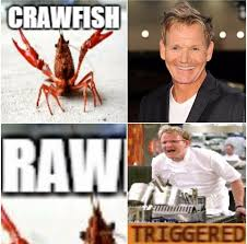 Line Cook Memes - chef ramsay facts mid week meme 14