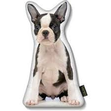 Home Decor Boston Lilipi Boston Terrier Puppy Pillow Terrier Puppies Terrier And