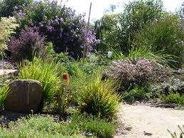 Suburban Backyard Landscaping Ideas by Her Own Garden Has Been Featured On Television Both In Australia