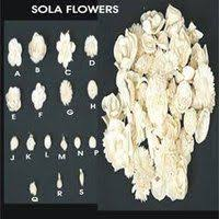 sola flowers sola flower suppliers sola flower exporters manufacturers