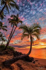 hawaii for thanksgiving 91 best hawaii hi images on pinterest hawaii travel landscapes