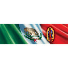 vantage point concepts lady of guadalupe on mexican flag original