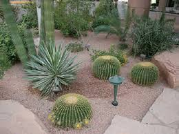 simple landscape designs for front yards with palm trees home