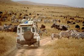 Quotes About Africa Travel