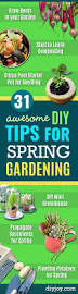 Gardening Tips For Summer - 31 awesome diy tips for spring gardening page 3 of 7 diy joy