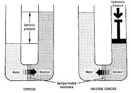 reverse osmosis water filter buyers guide