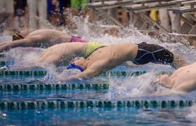 underclassmen ub swimmers and divers face financial and academic