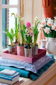 decorations for the home decorating ideas refresh your home with flowering bulbs
