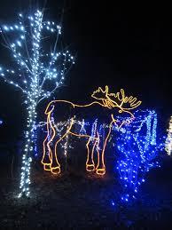 columbus zoo christmas lights bronx zoo christmas lights christmas lights decoration