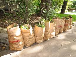 5 green ways to implement yard waste disposal all year round