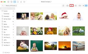 5 Up Photo Album How To Delete Photos From Icloud To Free Up Space In 5 Ways