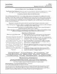 Account Executive Resume Samples by Executive Resume U0026 Professional Resume Samples
